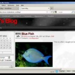 Wordpress Tutorial – Using WordPress Widgets in the Sidebar