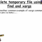 Xargs Command in UNIX and Linux Examples – Unix Command Tutorial 6
